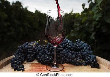 vignoble, verre, fond, écoulement, vin rouge