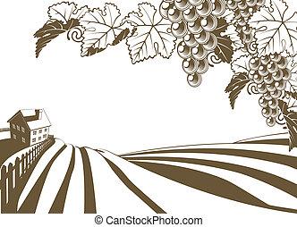 vignoble, vigne, ferme, illustratio