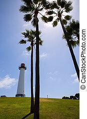 világítótorony, shoreline, liget, hosszú, kalifornia, ...