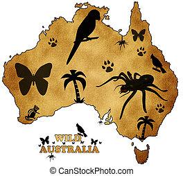 vild, australien