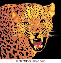 vild, jaguar, katt