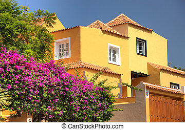 villa, classique, loin, espagnol, fleurs, ocean., tenerife, pas, spain.