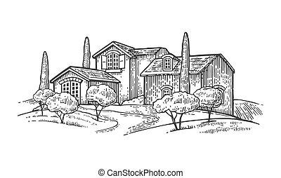 villa, fattoria, albero cipresso, campo, oliva, rurale, o, paesaggio