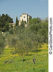 Villa in beautiful tuscan scenery