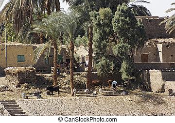 village detail in Egypt