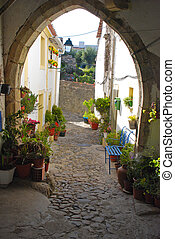 village houses, yard and flowers(Portugal)