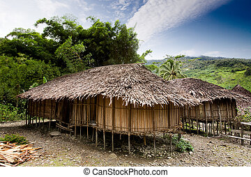 Village Hut - A traditional village hut in Papua, Indonesia