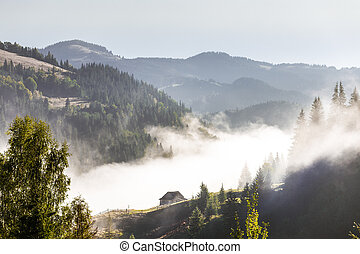 Village in a fog