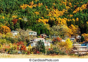 Village in forest during autumn season