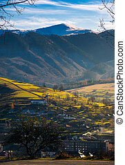village in valley. distant mountain with snowy top - lovely...