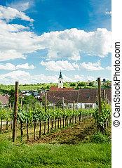 Village in Weinviertel