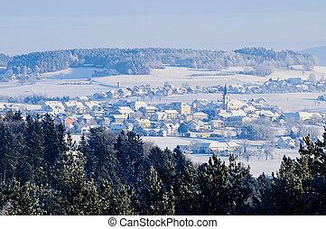 Village in Winter Landscape