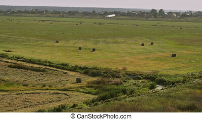 village landscape day time