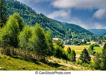 View on picturesque village Menzenschwand (St. Blasien) in the high Black Forest near Feldberg on a sunny summer day. Baden-W?rttemberg, Germany