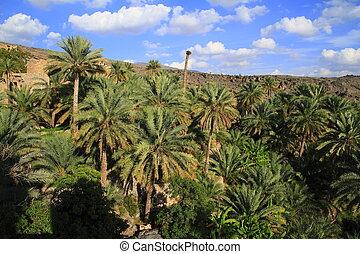 Village Misfat Al Abriyeen, Oman