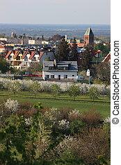 village montagne, dans, printemps