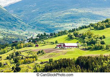 village montagne, et, ferme, dans, norvège