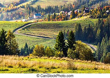 village on hillside near forest
