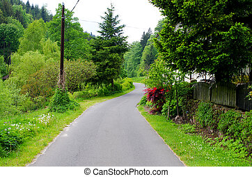 Village road during the spring