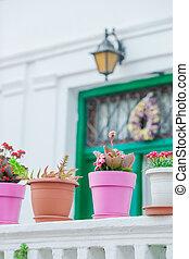 village, vieux, coloré, rues, traditionnel, grec, étapes, grèce, fleurs, pots fleurs