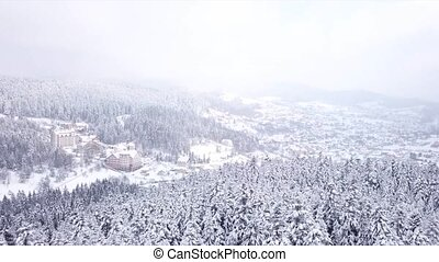 Village with buildings all covered with snow . Aerial view -...