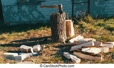 Village yard, an ax in tree trunk, chopped firewood...