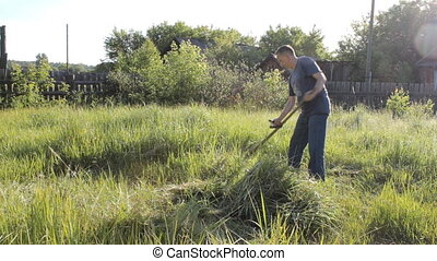 Villager mows the grass in your hand. Traditional method of...