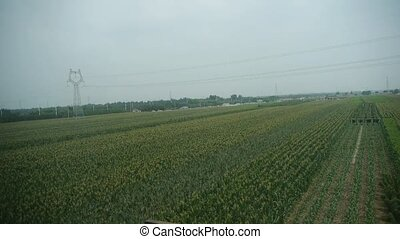 Villages plains tree crops farmland in rural countryside.Speeding train travel,