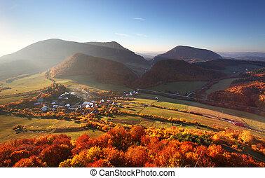 ville, aérien, coloré, automne, -, arbres, champs, petit, vue