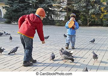 ville, fédéral, pigeons, parc, automne, enfants