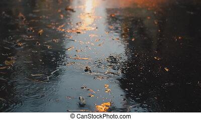ville, lent, pluie, mouvement, rue, tomber, night.