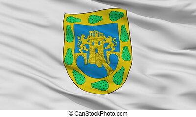 ville, mexicain, district, mexique, fédéral, drapeau, closeup