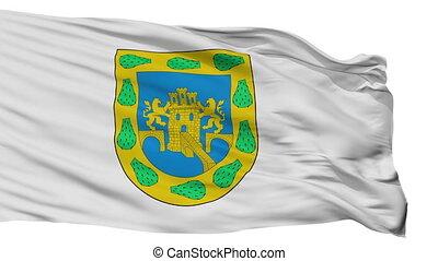 ville, mexicain, district, mexique, fédéral, drapeau, isolé