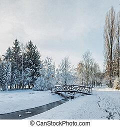 ville, neige, ensoleillé, pont, jour, premier, parc