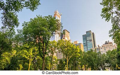 ville, parc central, york, nouveau, manhattan, végétation
