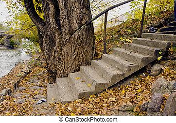 ville parc, vieux, escalier