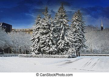 ville, time., parc, hiver