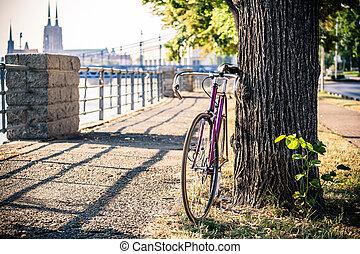 ville, vélo, arbre, rue, sous, fixe, route