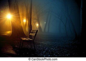 ville, vieux, brouillard, parc