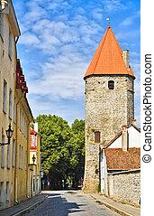 ville, vieux, tallinn, forteresse