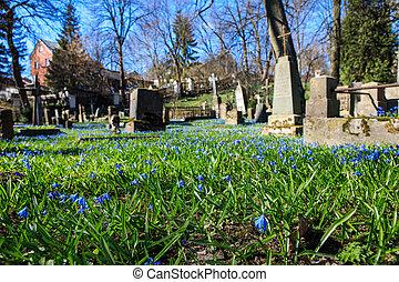 vilnius, cimetière, bernardine