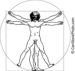 vinci, uomo, (vector, illustration)