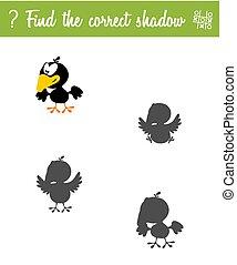 vinden, de, correct, shadow., opleiding, spel, voor, kinderen