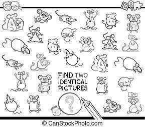 vinden, twee, identiek, muizen, onderwijs, kleur, boek