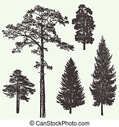 vindima, árvore, ilustração, vetorial, desenho, floresta, template.