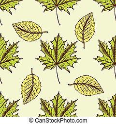 vindima, esboço, estilo, folhas
