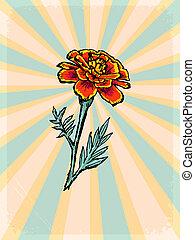 vindima, fundo, com, floral, motivo