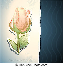 vindima, fundo, com, rosa