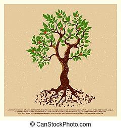 vindima, grunge, cartaz, com, flor, árvore fruta