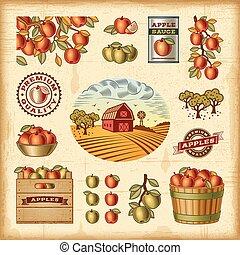 vindima, jogo, colheita, maçã, coloridos